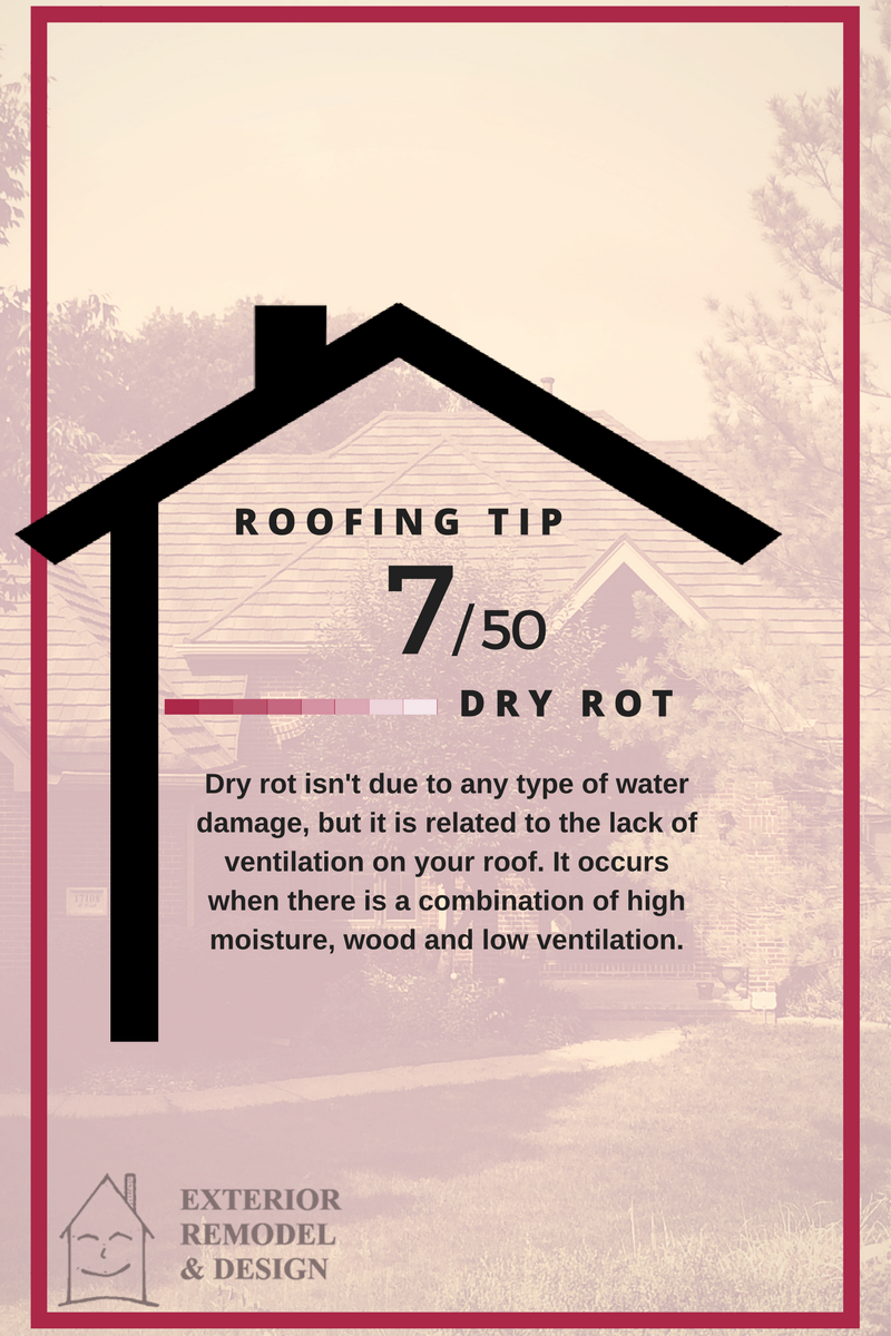 What is Dry Rot?
