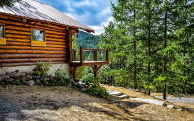What is Cedar Siding?