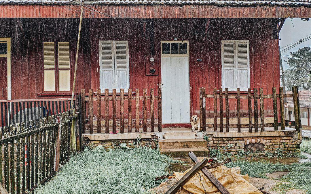 red paneled home with dog on porch in pouring rain