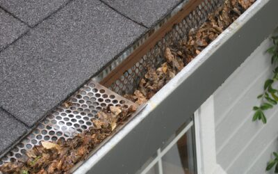 5 Steps to Prepare Your Gutters for Fall